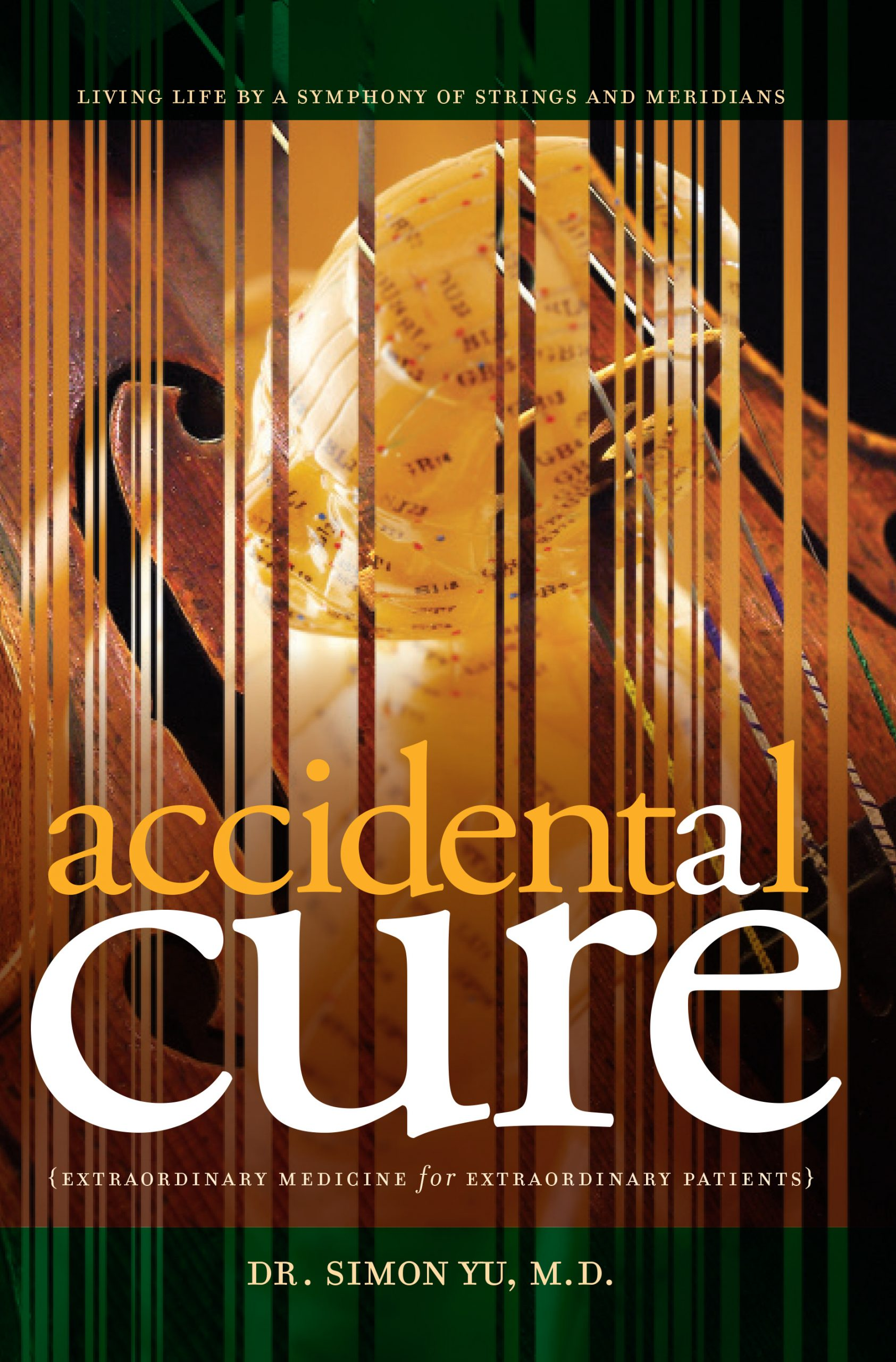 Accidental Cure book